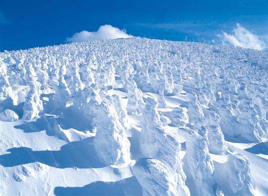 冬_樹氷.jpg