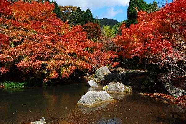 사가현_서브01(환경예술의숲).jpg