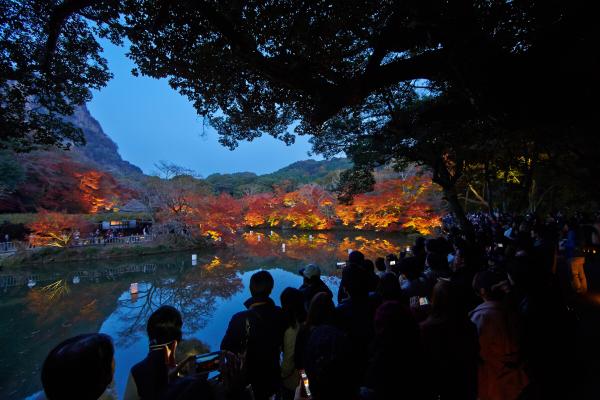 사가현_서브05(미후네야마라쿠엔의 야간 라이트업).jpg