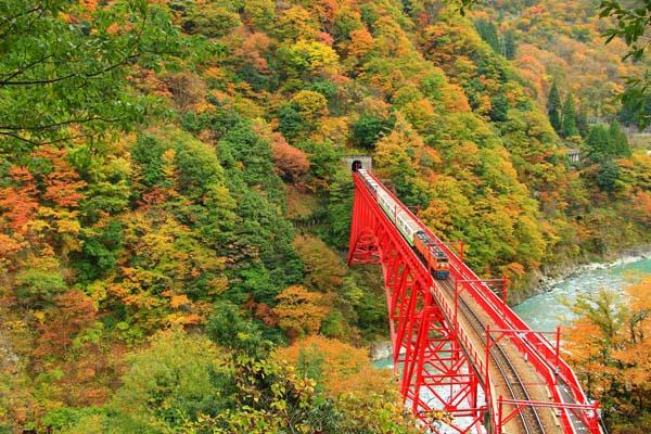 B고마츠03_도야마현(구로베협곡철도).jpg