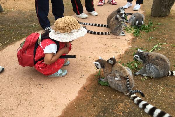 서브02_동물원.JPG