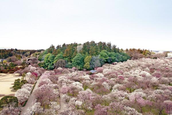 사진01(가이라쿠엔).jpg